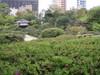20080419tsutsuji01