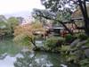 20091114koyo01