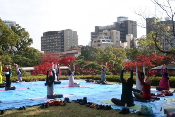 Yoga20141124